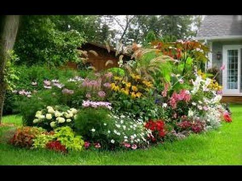 Proceso de siembra de plantas ornamentales tvagro por for Arboles ornamentales jardin