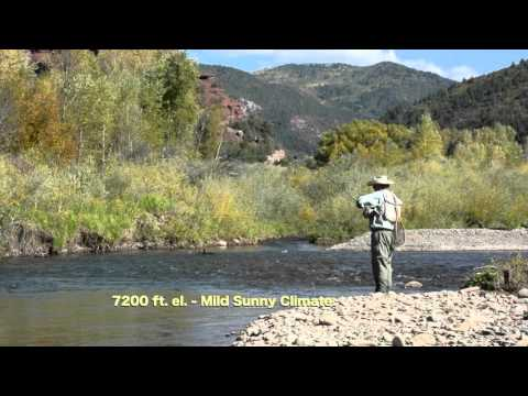 Riverside Property Telluride Colorado San Miguel River Fly Fisherman's Dream AW