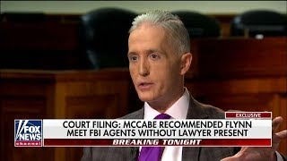 'They'll Do Everything to Disrupt Trump': Outgoing Rep. Gowdy Predicts Dems to Stymie Legislature