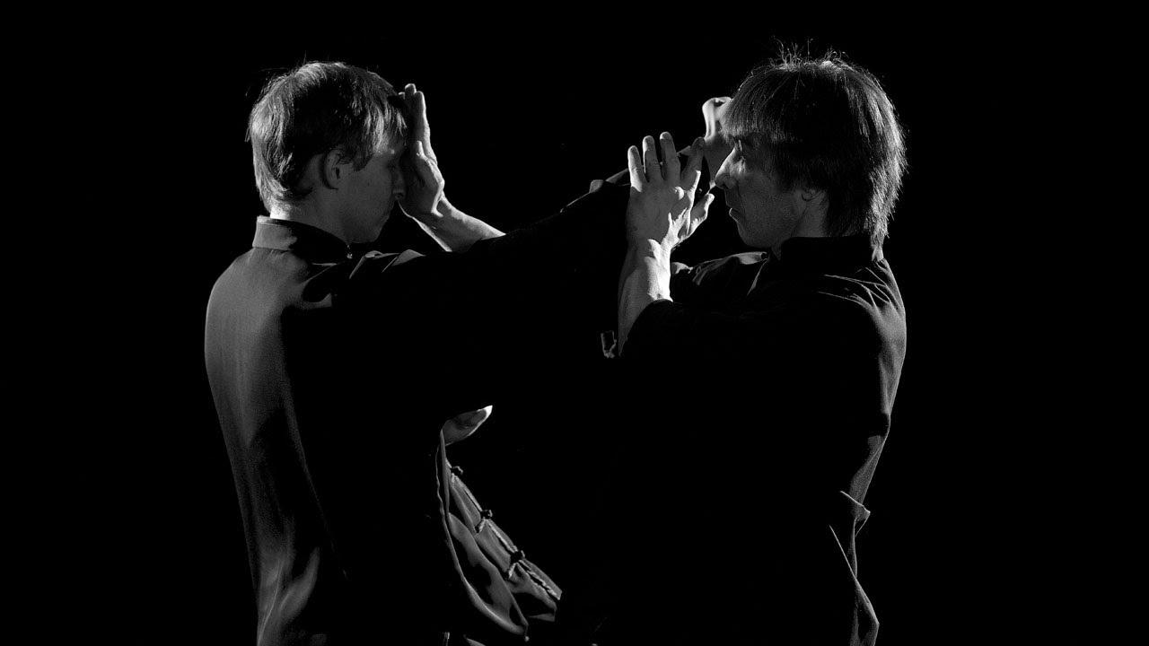Китайские боевые искусства внешнего направления Кунг Фу (2008)