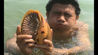 Primitive Technology with Survival Skills looking for food Sea snail