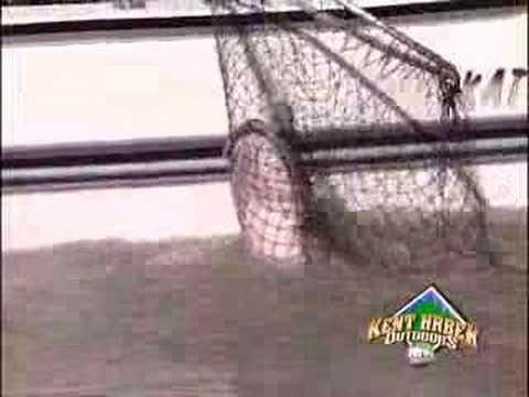 KHO Presents: Red River Catfish