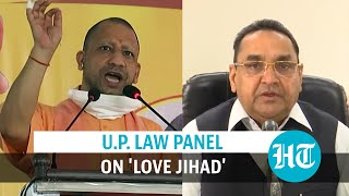 'If mass conversion happens...': Amid love jihad debate, UP law panel's report