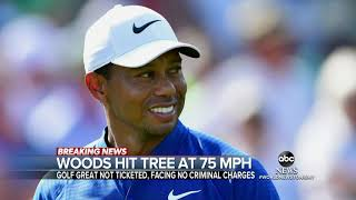 LAPD: Tiger Woods' Car Crash Caused By High Speed, Hit Tree