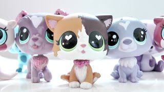 Gambar cover New Lps Haul    (CUTEST G4'S EVER!? Felina Meow) LPS Mail Time ❤