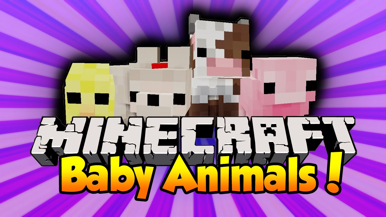 Cute animals mod - Minecraft Baby Animals Baby Pigs Sheep Cows More Mod Showcase Youtube