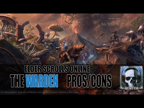 ESO: Warden General Pros and Cons