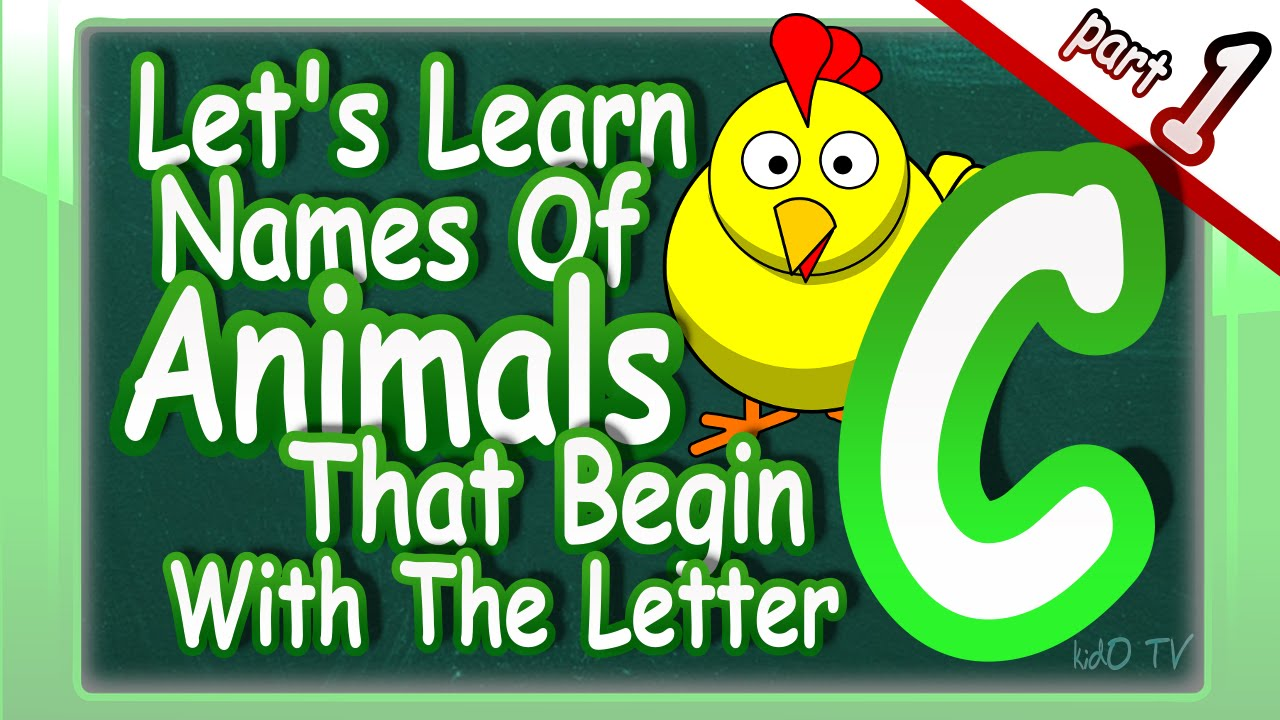 name an animal that starts with the letter n animals names in that begin with the letter c 49694