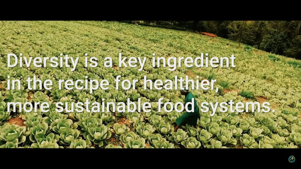 Diversity in Sustainable Food Systems