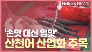 ′손맛 대신 입맛′ 화천산천어축제 산업화 주목