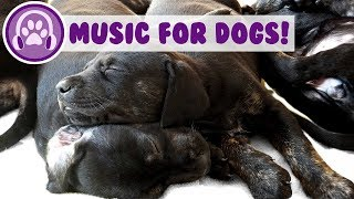 BEST Relaxing Music for Dogs! Calming Dog Music! New 2018!