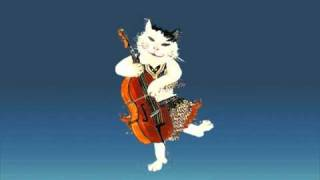 cat chy the cat the belly dancer the cello