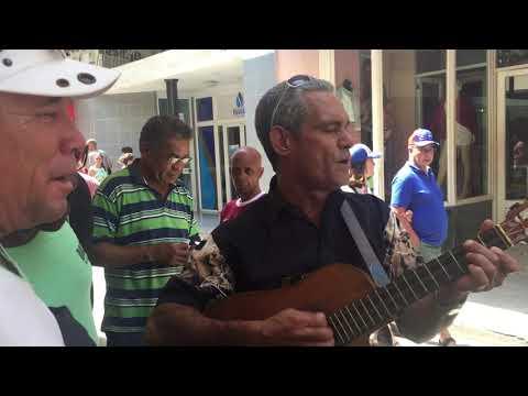 Cuban Musicians Playing The Tres Cubano