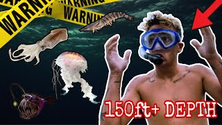 DIVING DARKNESS CATCHING DEEP SEA CREATURES!!