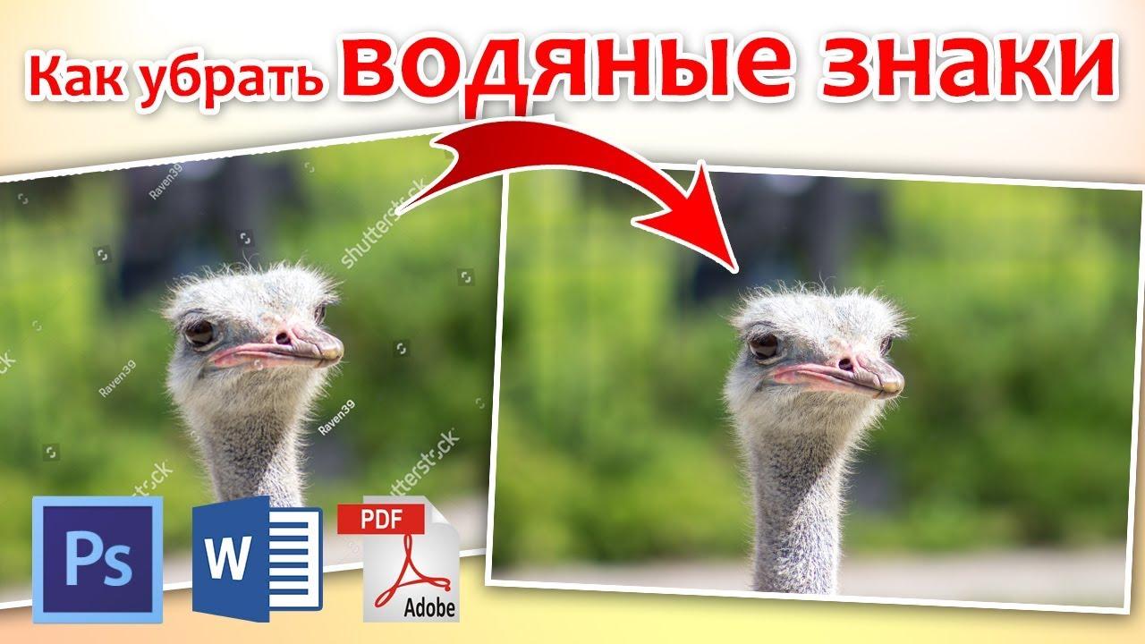 Как убрать водяные знаки с картинки в Photoshop, PDF ...