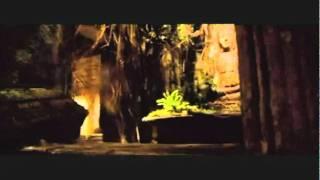 Deux frères : film de Jean-Jacques Annaud (2004)