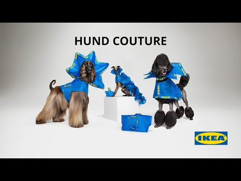 IKEA HUND COUTURE | Haute Couture Outfits for Dogs | IKEA Australia
