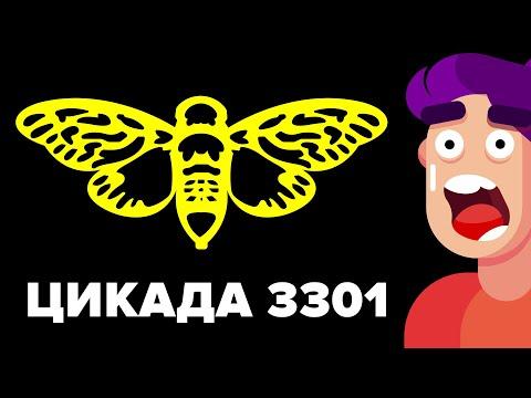 -головоломка «Цикада 3301» – самая большая загадка Интернета.