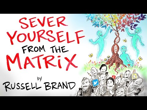 How to Have Mental Clarity in an Unclear World - Russell Brand