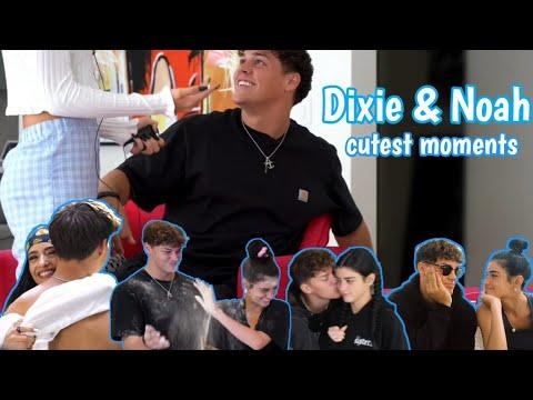 Dixie D'amelio & Noah beck | Cutest moments