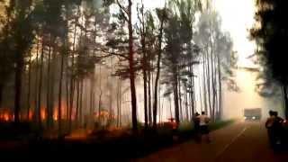 Pożar lasu - Gleba (k. Kadzidła)