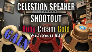 Celestion Alnico Speaker Shootout: Ruby, Cream, and Gold - GAIN - Magnatone Super 15 With Scott Sill