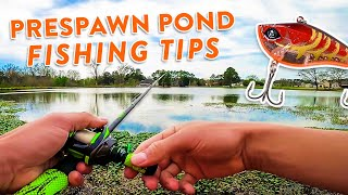 Spring Bass Fishing In Grassy Ponds! | BEST Baits & Techniques
