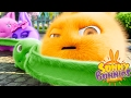 Cartoons for Children | Sunny Bunnies THE SUNNY BUNNIES LONG EAR BUNNY | Funny Cartoons For Children
