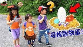 玩具魔法寵物蛋 一起探險到戶外尋找驚喜蛋!好好玩喔~ 恐龍蛋和小雞公仔 桌面玩具開箱 Jo Channel