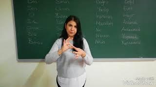Türk İşaret Dili - Temel Kelimeler