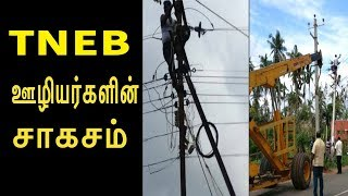 Download lagu gaja TNEB ஊழ யர கள ன ச கசம EB Working 24 7 to Restore Supply SaveDelta MP3