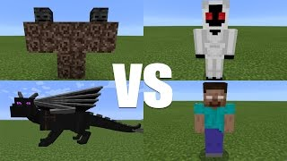 What Happens When You Spawn Herobrine, Entity 303, The Wither & Ender Dragon in Minecraft PE?