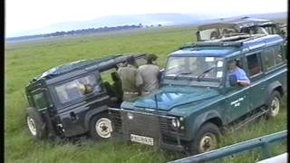 Our Kenyan Safari - Masai Mara - Don't Get Stuck With Lions Around