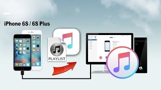 How to Transfer Playlists from iPhone to iTunes