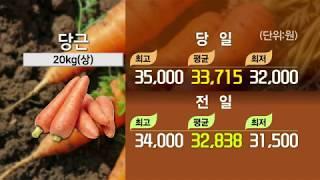 [TODAY 채소] 당근, 쪽파, 취청오이, 가지, 주…