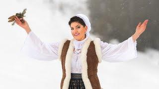 Sofia Plesu Munteanu - Florile dalbe (Official Video) Colinde NOU