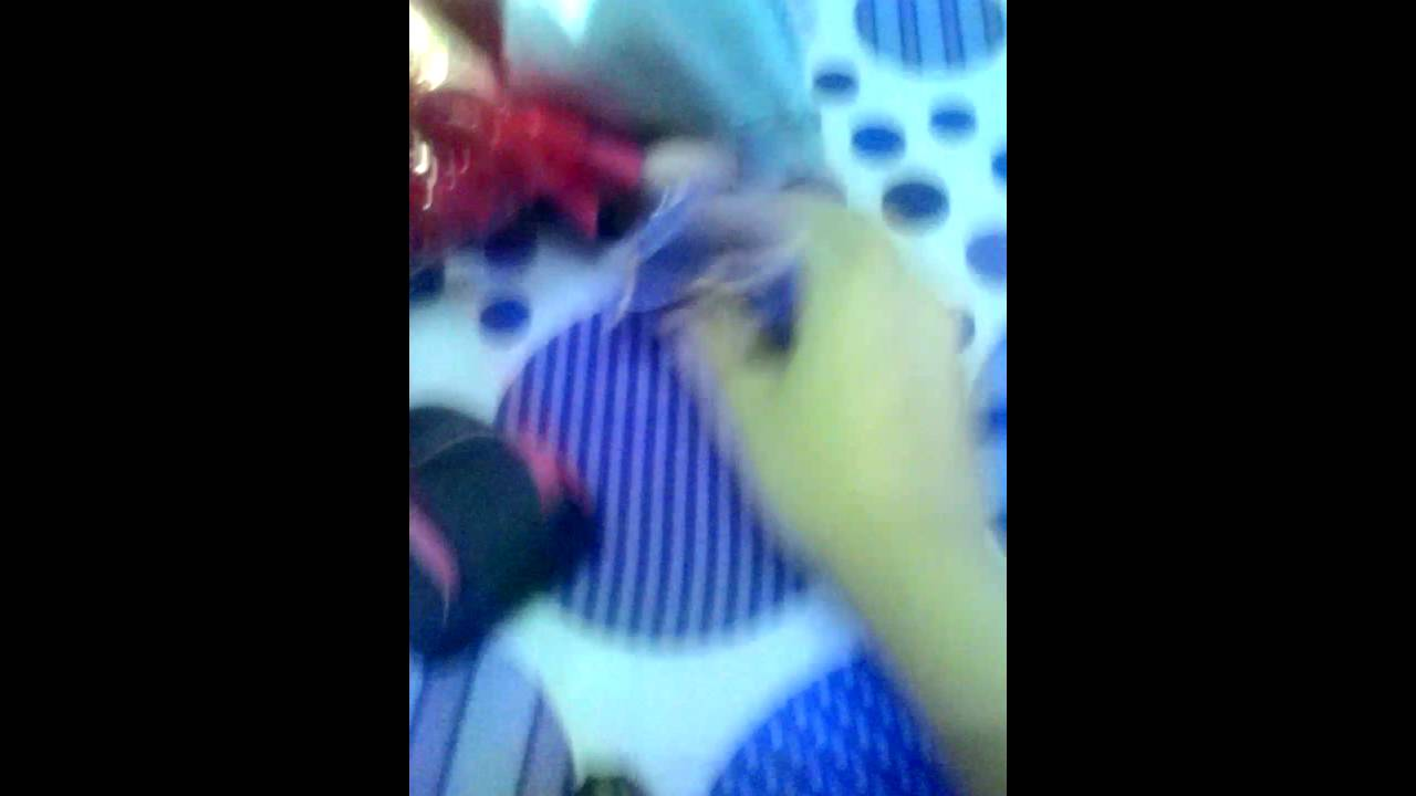 Váy búp bê - YouTube