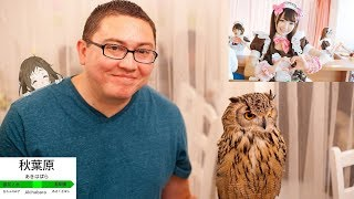 ANIME STORES, MAID CAFE, AND AN OWL CAFE - Japan Trip 2016 Day 4 Vlog