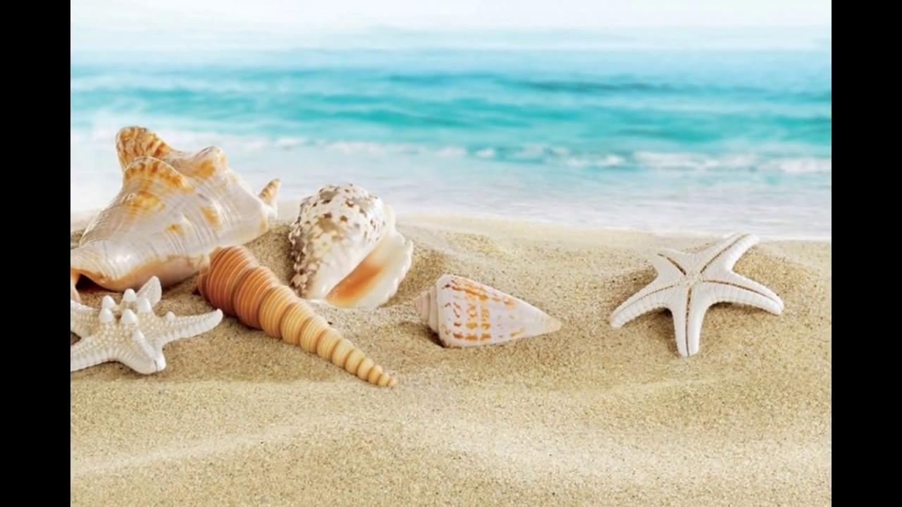 i doni dal mare complementi d 39 arredo artigianali
