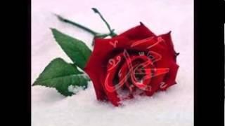 Www Xat Com Fatayat Chat Fatayat Habibti Chat Arab Chat Dardacha Maroc