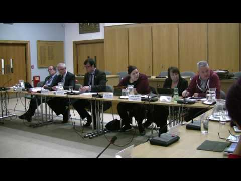 Harlow Cabinet Jan 2017