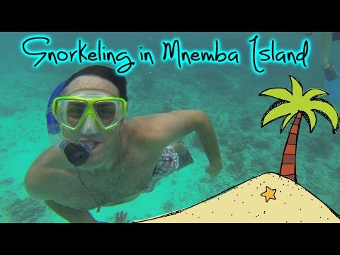 Snorkeling in Mnemba Island