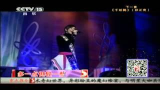 CCTV音乐台 中华情 台湾大联欢   一想到你呀 张惠妹