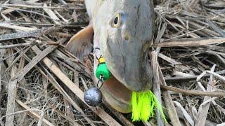 Рыбалка на спиннинг Март 2021 Камызяк