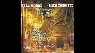 Ital Horns meets Bush Chemists feat  Prince Iquela  - History Mystery Destiny + Dubwise Destiny