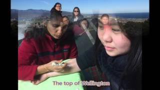 香港培道中學_2016紐西蘭威靈頓遊學團