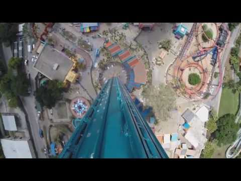 Falcon's Fury Official POV - Busch Gardens Tampa Florida