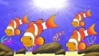 Các con vật cho bé | em học thế giới động vật biển Con cua Cá mập Cá heo | Dạy trẻ thông minh sớm