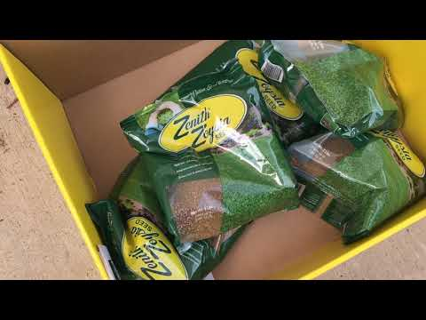 Planting Zoysia Grass Seed.  Video 1 - Prep To Germination (1 Month)