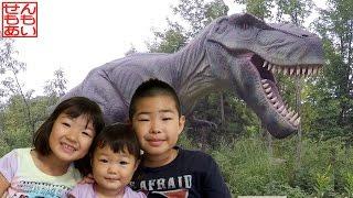 恐竜動画まとめ Dinosaur Highlights